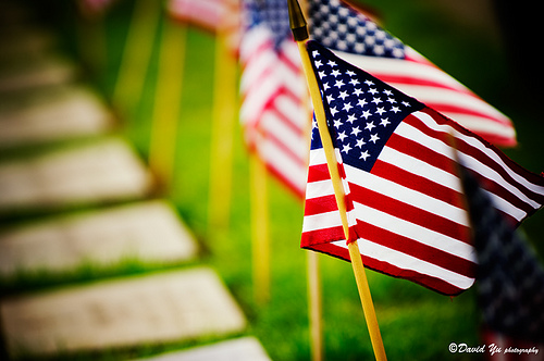 memorial-day-flags