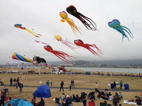 berkeley-kite-festival