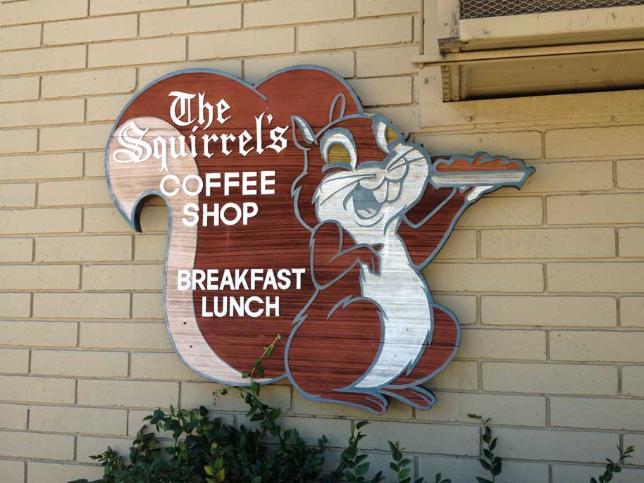 squirrels-coffee-shop-sign-lafayette