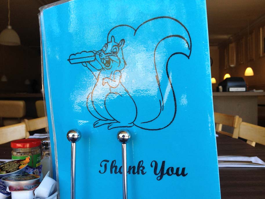squirrels-coffee-shop-thank-you-lafayette