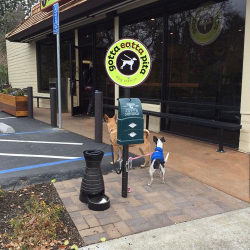 gotta-eatta-pita-danville-dog-station