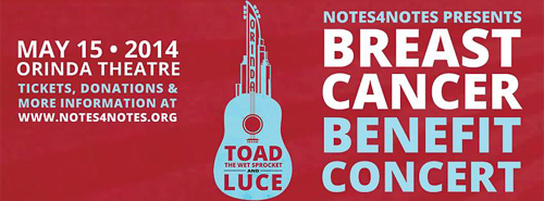 toad-wet-sprocket-luce-concert-2014