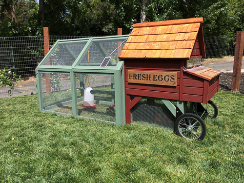 lafayette-kitchen-tour-h2-chicken-coop