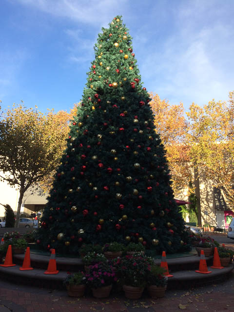 broadway-plaza-christmas-tree-2014