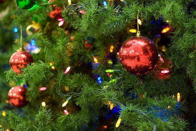 flickr-governmentofalberta-christmas-tree-lights