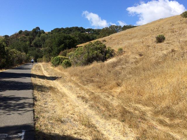 lamorinda-trail