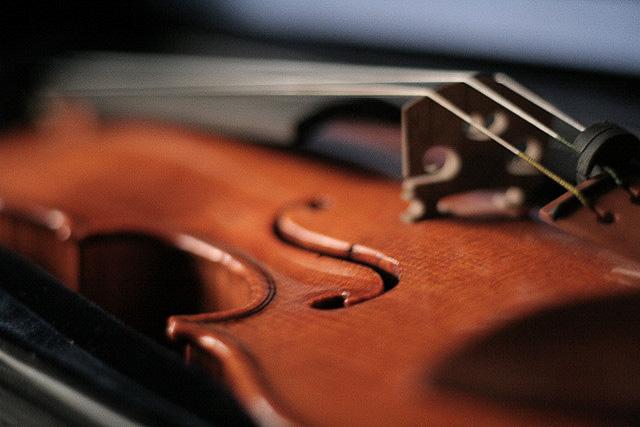 flickr-land_camera-violin