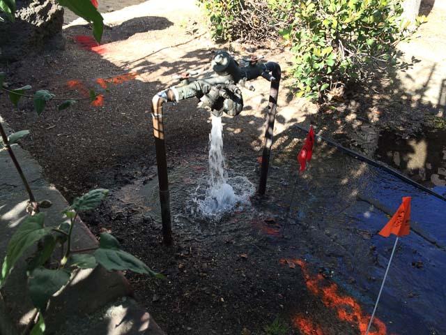 water-leak-walgreens-lafayette
