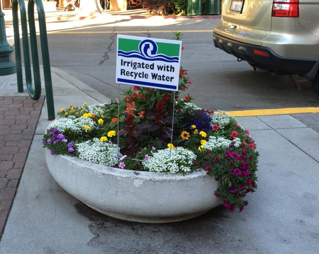 irrigated-with-recycle-water-walnut-creek-sign