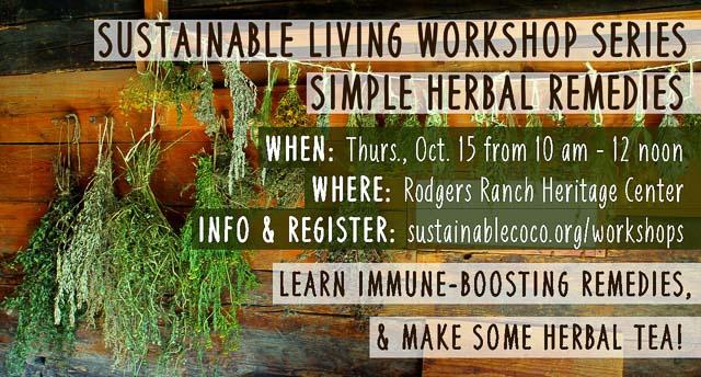herbal-remedies-workshop-flyer-2015