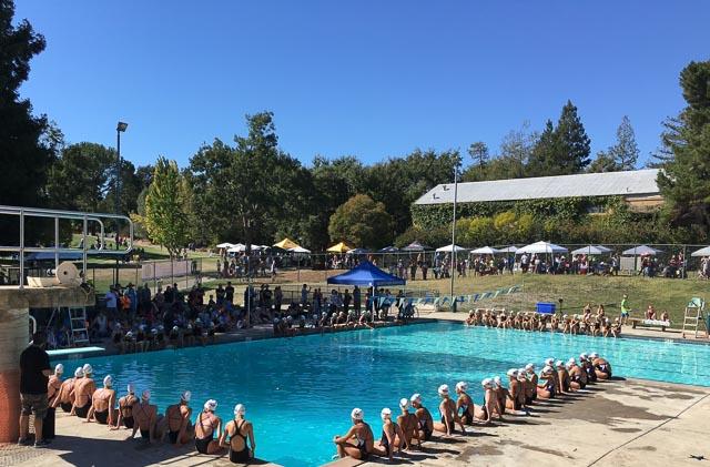 larkey-park-swim-center-walnut-creek-pool