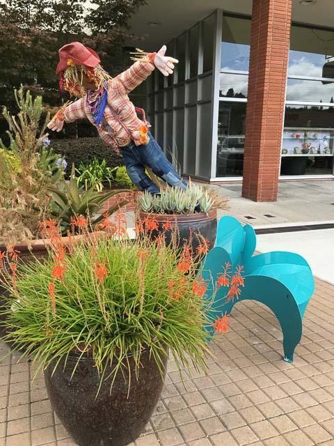 scarecrow-orinda