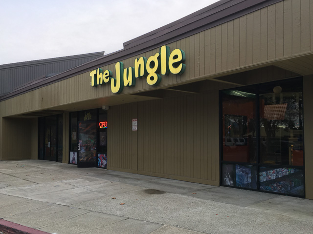 the-jungle-concord-outside