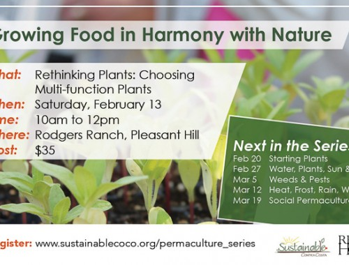 permaculture-growing-food-feb132016