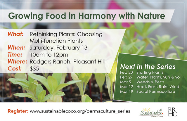 permaculture-growing-food-feb132016