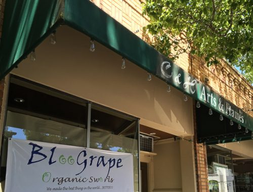 bloogrape-danville-outside-dev