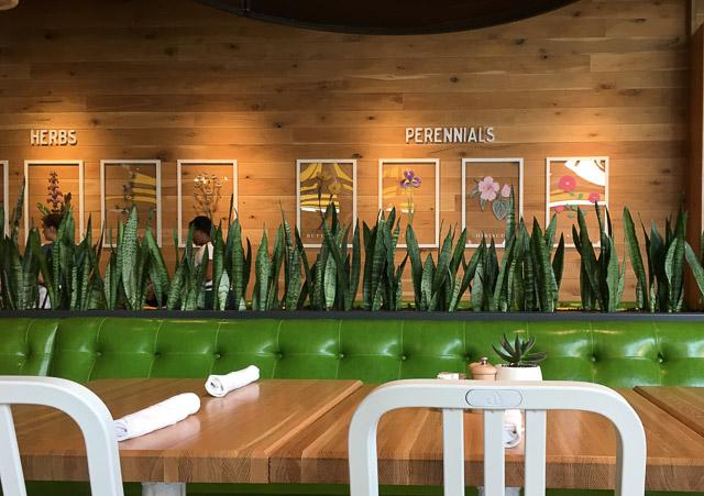 true-food-kitchen-broadway-plaza-inside-perrennials
